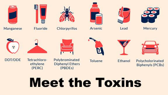 A graphic of 12 toxins that can cause nerve damage